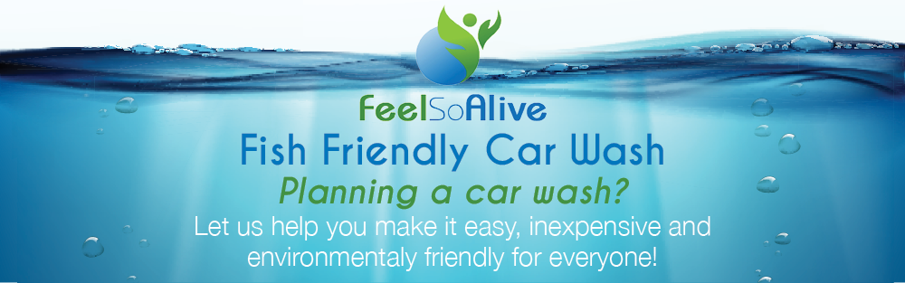 Fish Friendly Car Wash header image