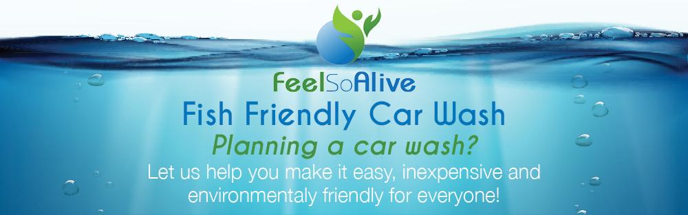 Fish Friendly Car Wash header image